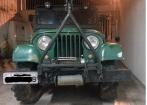Willys 1960 pronto para trilha