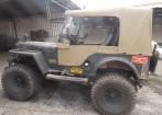 Jeep Willys 1954 - CJ 3 - carroceria de fibra