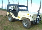 Jeep willys 1968 se motor
