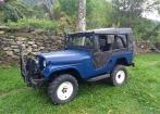 Jeep Willys CJ5 em bom estado. Carro de colecionador.