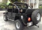 Jeep Willys Bernardao
