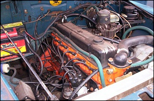 Cores no motor do opala-100_3738.jpg