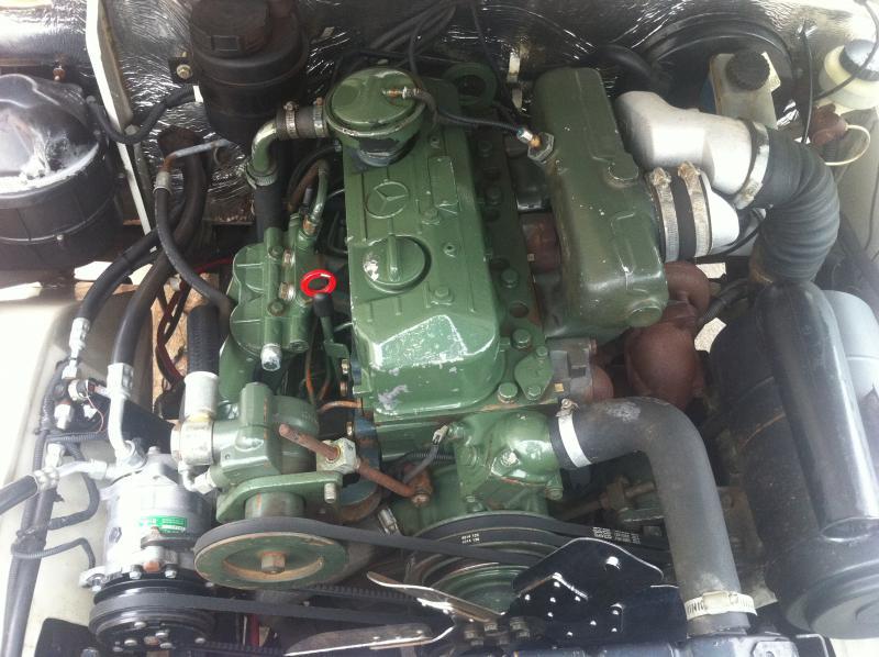 Mercedes Benz Of Tampa >> Motores 608 - Existem vários tipos? - Página 5