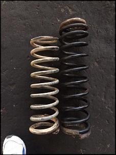 Molas Rock Krawler RK Triple Rate Troller.-13699948_1132545920138531_5028832398595930567_n.jpg