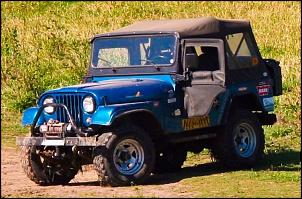 Vendo Jeep Willys 78 Equipado pra trilha(guincho/bloqueio/cap atlantida)-img_2702.jpg