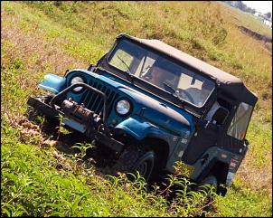 Vendo Jeep Willys 78 Equipado pra trilha(guincho/bloqueio/cap atlantida)-img_2676.jpg