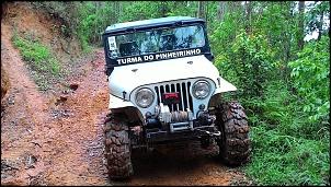 Jeep Ford 1976 de Trilha-p_20151101_133005-2-.jpg