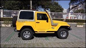 Troller T-4 - Turbodiesel - 2014  - R$ 79.900,00-20160710_121717c.jpg