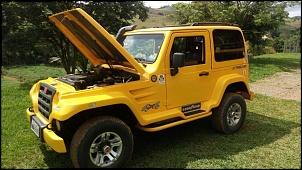 Troller Amarelo ano 2009 - 3.0-troller-t-4-2009-348515-mlb25246243985_122016-f.jpg