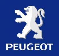 grupo reunido para solucionar problemas e trocar informaçoes sobre peugeot 504