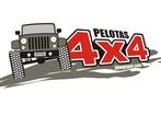 Pelotas4x4