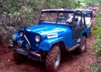 Jeep Ford 1979