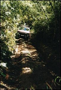 pedreira2009