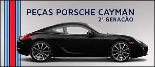 Porscha cayman2
