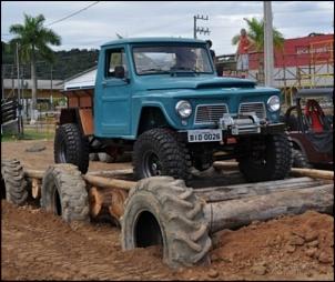 BF Goodrich 31 ou 33 (mud terrain)?-1.jpg