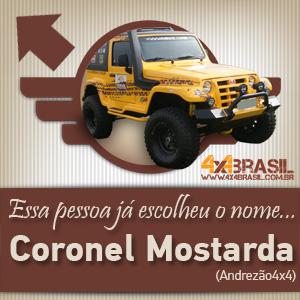 Você escolhe o nome do veículo oficial do 4x4Brasil-300x300pxls-04.jpg