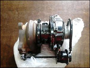 Jpx montez std 1994 (ex fatma)-dsc_0887-1-.jpg