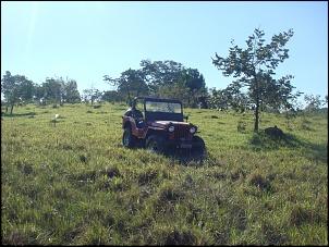 O retorno do JIPÃO (O ONÇA)-jeep_jaca_01.jpg