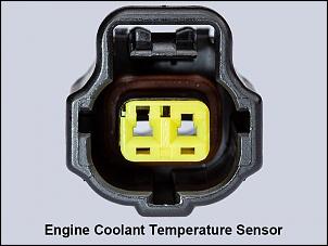 Cherokee XJ 99: rejuvenescimento-connector-engine-coolant-temperature-sensor.jpg