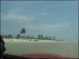Rio de Janeiro-Natal - No periodo entre 26/12 a 20/01/2008-mangue0015.jpg