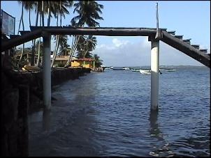 Rio de Janeiro-Natal - No periodo entre 26/12 a 20/01/2008-mangue0105.jpg
