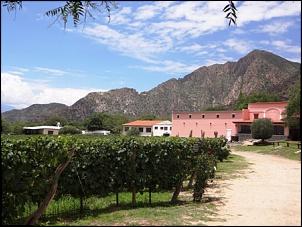 Norte da Argentina (Salta, Purmamarca, Cafayate) e Chile (Atacama) em 10 dias-caf-finca3.jpg