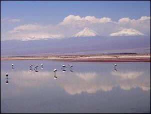 Norte da Argentina (Salta, Purmamarca, Cafayate) e Chile (Atacama) em 10 dias-spa-r-n-flamingos-3.jpg