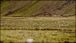 Altiplano 2016 - Peru e Chile via Acre-img_2135.jpg