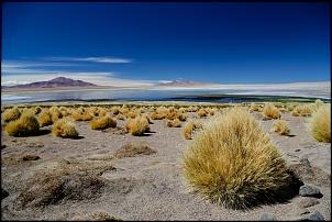 Altiplano 2016 - Peru e Chile via Acre-img_3621.jpg