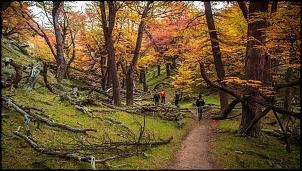 Patagônia - 14 mil km > Ushuaia, TDP, El Calafate, El Chalten, Carretera, Bariloche-dsc_3623.jpg