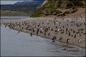 Carretera Austral, El Chaltén, El Calafate, Torres del Paine e Ushuaia - Janeiro 19-img_2659.jpg