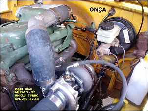 Fotos de Bands-turbo-onca-12-.jpg