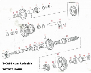 -t-case-rdz-band-1-.jpg