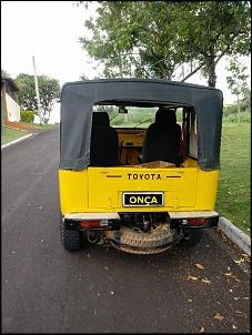 Melhor Troller em custo x beneficio-onca-abr-19-6-.jpg