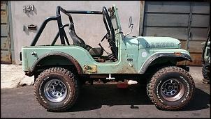 Jeep CJ-5 1974 - DESMONTE-dsc_0040.jpg