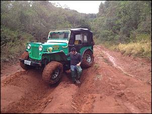 Vendo Jeep Willys Kaiser - Cara de Cavalo 1968-iphone-fernando-22.12-092.jpg