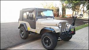 Jeep Willys 1966 - IMPECÁVEL-13445829_961461403971456_7398997763225524256_n.jpg