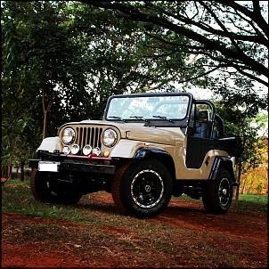 Jeep Willys 1966 - IMPECÁVEL-img_20121031_003301.jpg