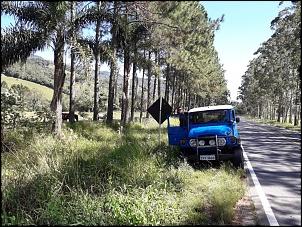 Toyota Bandeirante Jipe Curto - 1981-img-20190420-wa0007.jpg
