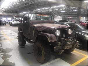 Jeep Willys 1969 opala 6 cil.-61d50354-cf65-4991-8350-cdb1c598299a.jpg