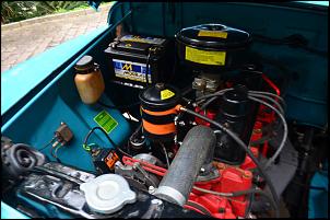 FORD F75 Willys 1974 4X4-dsc_0118.jpg