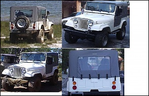 Ford/Willys 1982 - CJ5-jeep_004.jpg